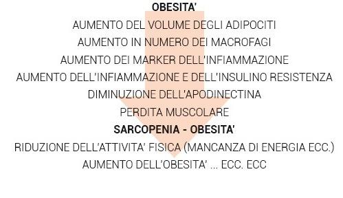 obesità freccia