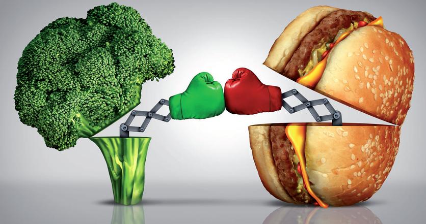 dieta di richiamo di perdita di pesona